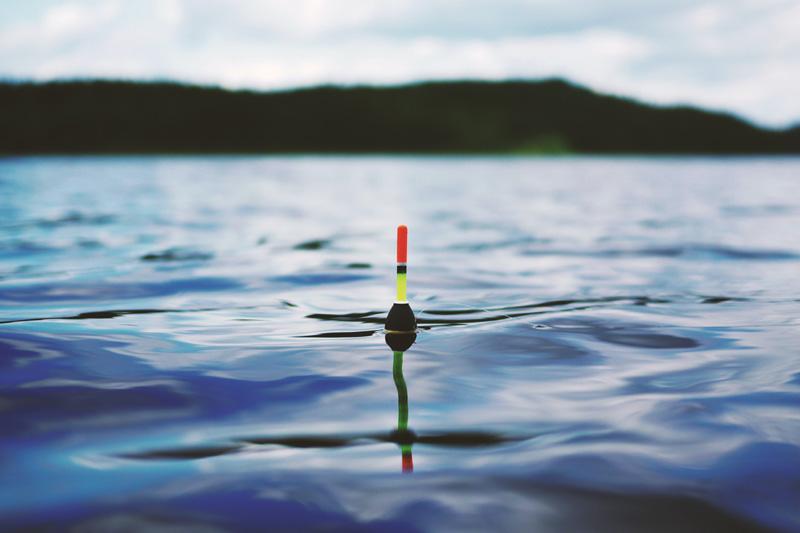 vissen Frankrijk